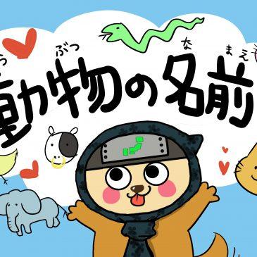 【単語】動物(どうぶつ)